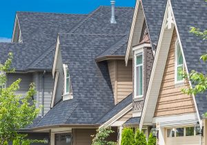 Roofline of townhomes